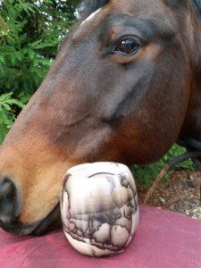 vessel w:horse